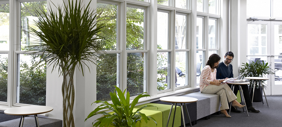 How Nature Mimicking Design Helps Us Cheap Office Chairs Price